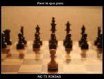 Nunca rendirse