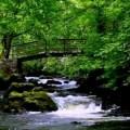 cascada irlandesa