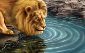 león_bebiendo