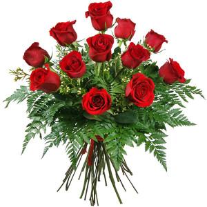 rosas-rojas-amor1